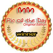 http://www.modelmayhem.com/images/winner_badges/potd_oe.jpg